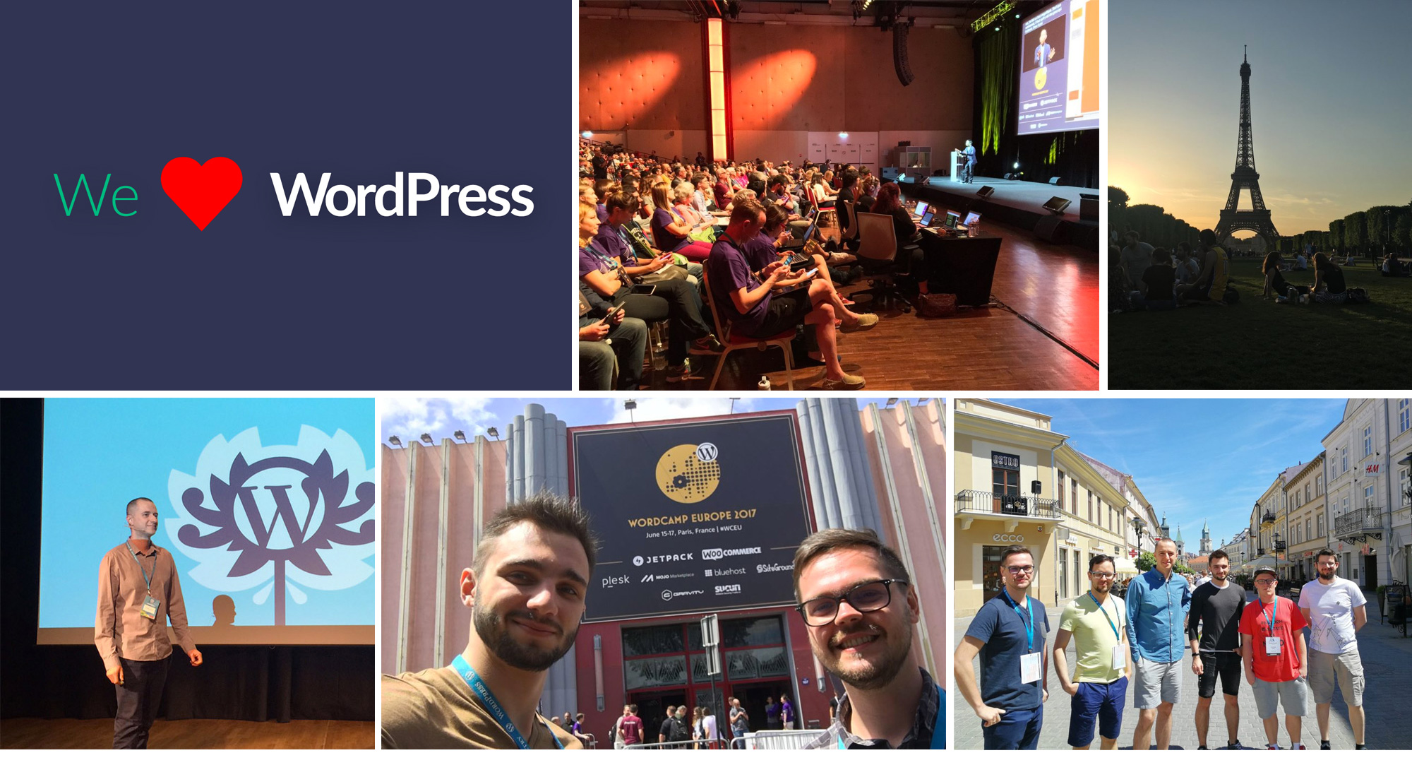 wordpress developer praca